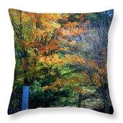 Dreamy Fall Scene Throw Pillow