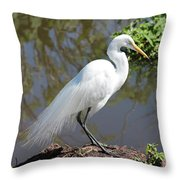 Dreamy Great Egret Throw Pillow