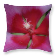Dreamy Hibiscus Throw Pillow