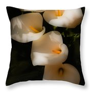 Dreamy Lilies Throw Pillow