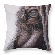 Dreamy  Listowel Fair Throw Pillow