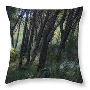Dreamy Marjan Forest In Croatia Throw Pillow