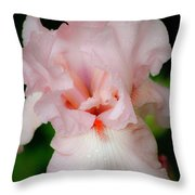 Dreamy Pink Iris Throw Pillow