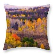 Dreamy Rocky Mountain Autumn View Throw Pillow