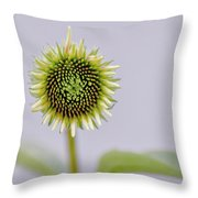 Dreamy Sunny Throw Pillow