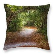 Dreamy Walk Throw Pillow