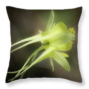 Dreamy Yellow Columbine Throw Pillow