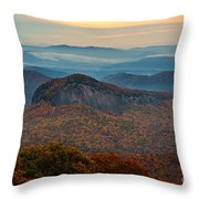 Dressed In Gold. Throw Pillow