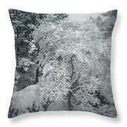 Dressed In Lace Throw Pillow