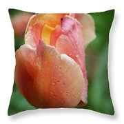 Dressed In Raindrops Throw Pillow