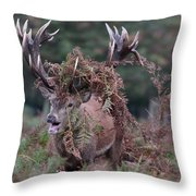 Dressed Red Stag Throw Pillow