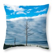 Drew County Bonanza Throw Pillow