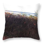 Dried Fence Throw Pillow