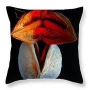 Composition With Dried Flowers Red Hat. Throw Pillow