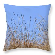 Dried Grass Blue Sky Throw Pillow
