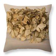 Dried Hydrangea Throw Pillow