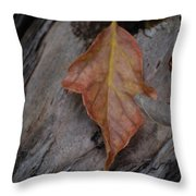 Dried Leaf On Log Throw Pillow