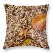 Dried Leaf On The Fern Throw Pillow
