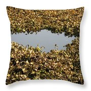 Dried Leaves In A Pond Throw Pillow
