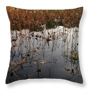 Dried Lotus In The Lake Throw Pillow