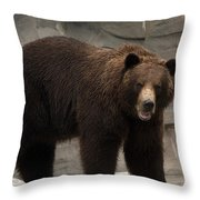 Dried Off Throw Pillow