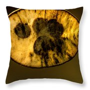 Dried Out Leaf With Seeds Throw Pillow