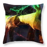 Dried Plants And Prisms #2 Throw Pillow