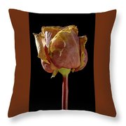Dried Rose Throw Pillow