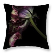 Dried Tulip Throw Pillow