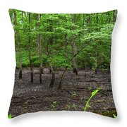 Dried Up  Pond Throw Pillow