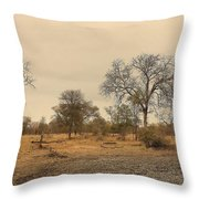 Dried Up Watering Hole Throw Pillow