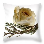 Dried White Rose Throw Pillow