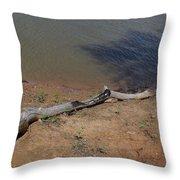 Drift Wood Red River Texas Throw Pillow
