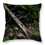 Drifted Tree Throw Pillow