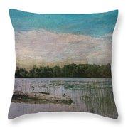 Drifting Downstream Throw Pillow