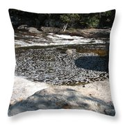 Drifting Dreams Throw Pillow
