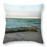 Driftwood 2 Throw Pillow