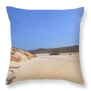 Driftwood Abandoned On A Beautiful Remote Beach In Aruba Throw Pillow