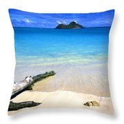 Driftwood And Islands Throw Pillow