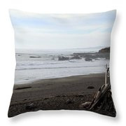 Driftwood And Moonstone Beach Throw Pillow