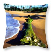Driftwood And Palms Throw Pillow