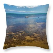 Driftwood At Low Tide In Key West Throw Pillow