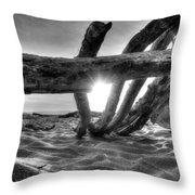 Driftwood B/w Throw Pillow
