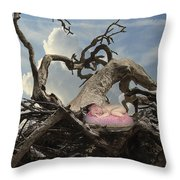 Driftwood Baby Throw Pillow