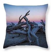 Driftwood Beach 1 Throw Pillow