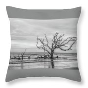 Still Standing In Black And White Throw Pillow