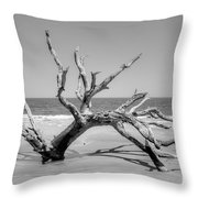 Driftwood Beach In Black And White Throw Pillow