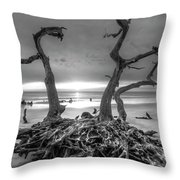 Driftwood Black And White Throw Pillow