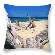 Driftwood Buck Island National Park Throw Pillow