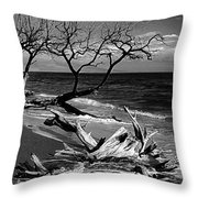 Driftwood Bw Fine Art Photography Print Throw Pillow